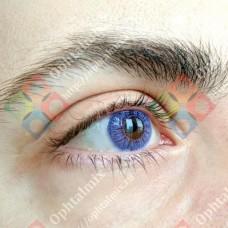 Офтальмикс butterfly 1 тоновые фиолетовые линзы